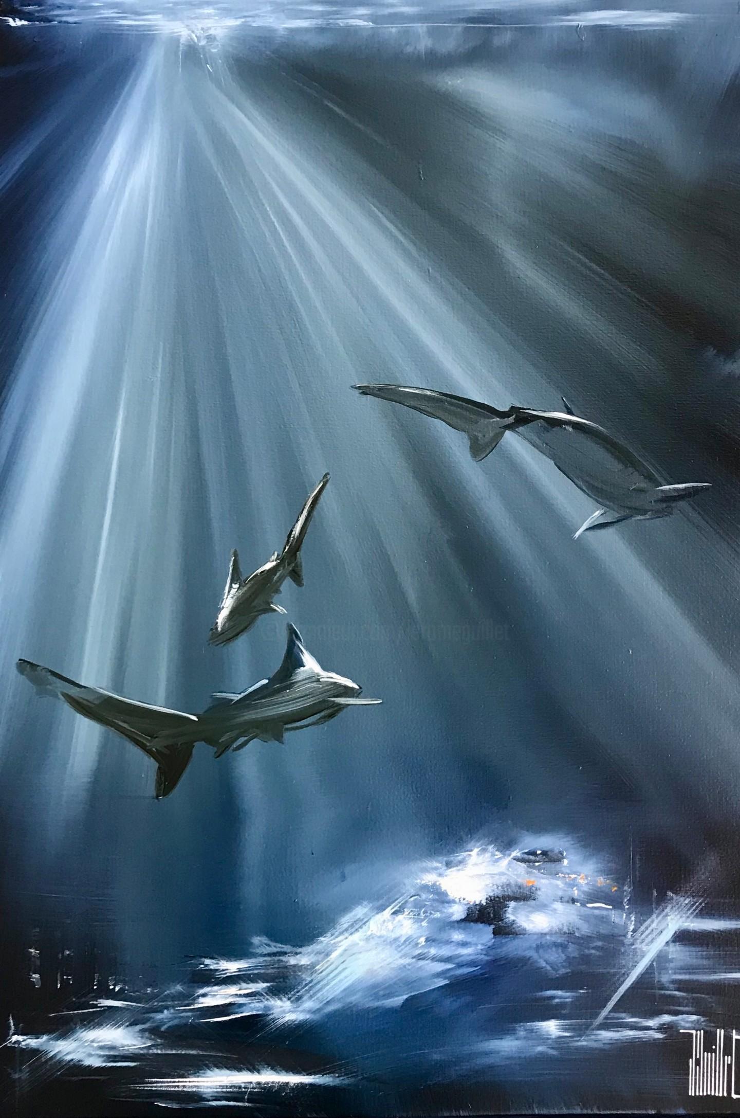 Jerome Guillet - Sharks